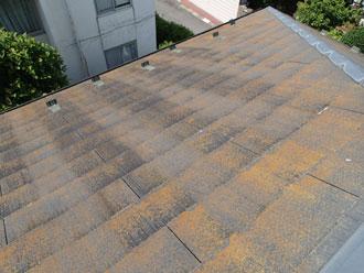 スレート屋根に苔