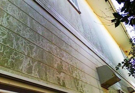 カビや苔が目立ちにくい色で外壁を塗装してあっても、汚れは必ず付着しています