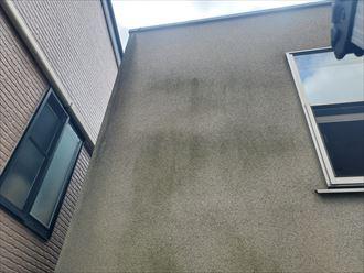モルタル外壁に苔が発生
