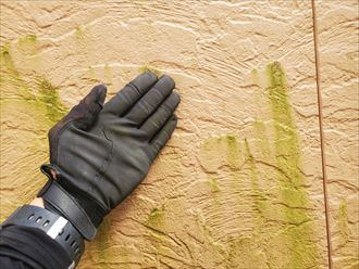 鎌ケ谷市くぬぎ山にてサイディング外壁のメンテナンスのご相談
