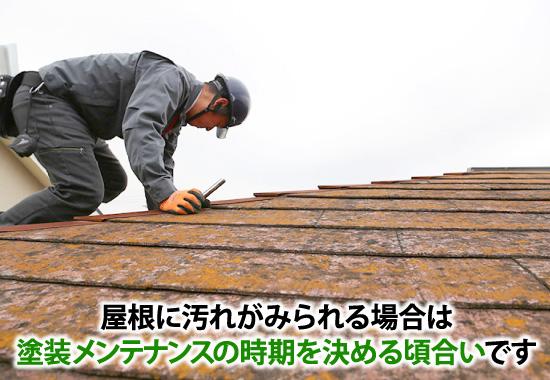 屋根に汚れがみられる場合は塗装メンテナンスの時期を決める頃合いです