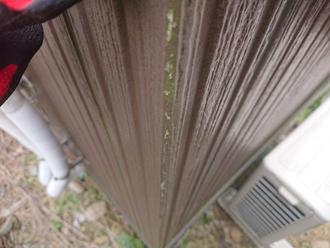 窯業系サイディング外壁に藻が発生