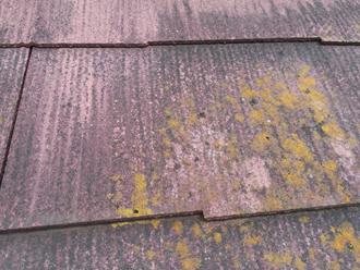 スレートには色褪せと藻が目立ちます