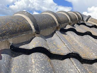 屋根のカビ