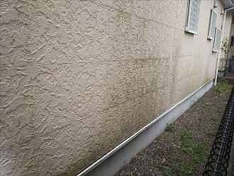 千葉市中央区村田町にて経年の劣化によりサイディングの塗膜が剥がれていますので外壁塗装工事を行いましょう