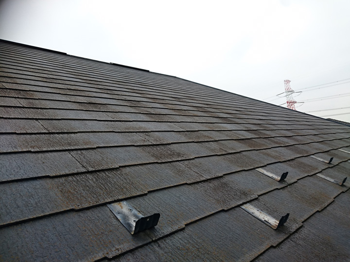 苔が繁殖したスレート屋根