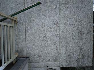 モルタル外壁調査