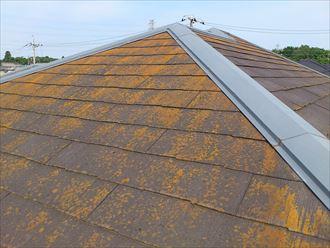 苔が付着したスレート屋根点検