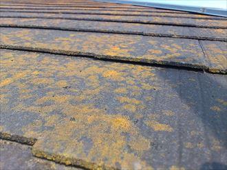 屋根材の浮きや反り