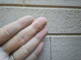 差ディングに苔が発生している原因は防水性の低下です