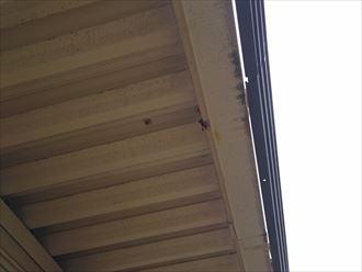 軒天の塗装前点検