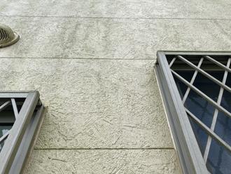 白い窯業系サイディング外壁には藻が付着していました