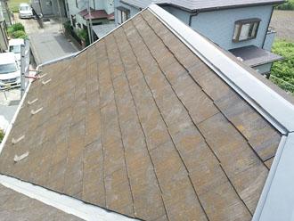 スレート屋根に藻が発生