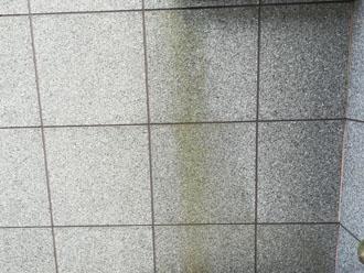 窯業系サイディング外壁の汚れ