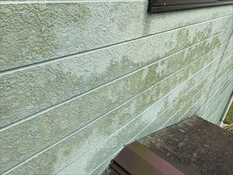 富津市竹岡にて爽やかなグリーンのサイディング外壁に色褪せやシーリングの劣化を確認、外壁塗装の時期です