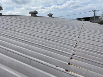 千葉市美浜区新港にて折半屋根の調査依頼、屋根塗装工事をご提案