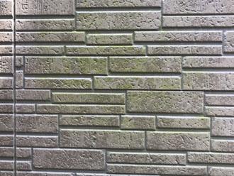 藻で緑色に変色したレンガ調の窯業系サイディング外壁