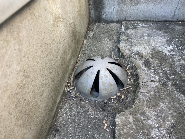 排水溝詰まり