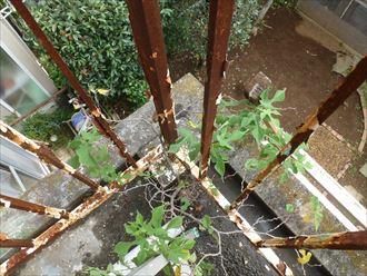 フェンスの錆と排水不良
