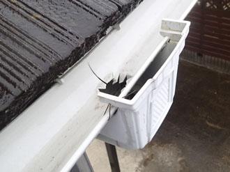 お問い合わせのきっかけとなった雨樋の破損
