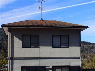 屋根塗装前の苔