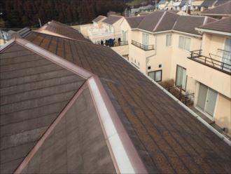千葉市花見川区み春野 方角による屋根の色の違い