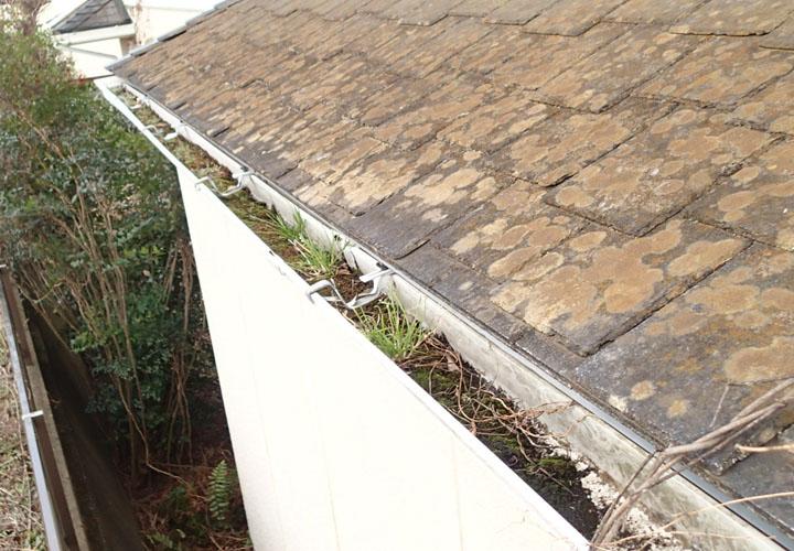 土や雑草で塞がれた雨樋