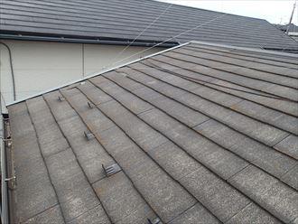君津市 南側の屋根