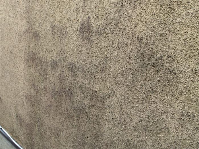 モルタル壁の黒ずみ