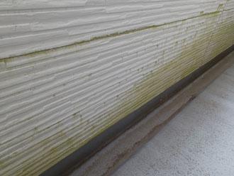 ベランダの壁のカビ