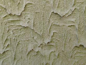 西側の窯業サイディング外壁に藻が発生