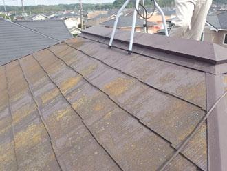 藻で変色し、雨染みが目立つスレート屋根