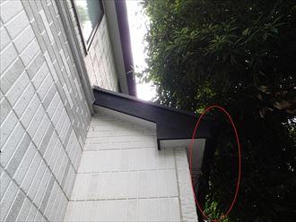 外壁と植木の接触