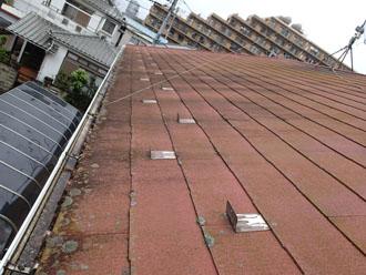 スレート屋根には藻が繁殖