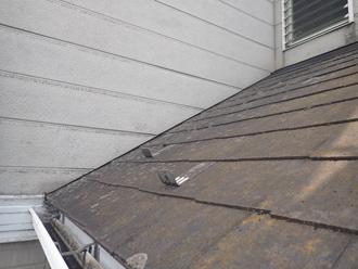 スレート屋根に藻や苔