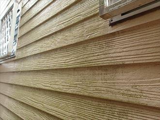 八千代市八千代台南 外壁に発生したスギ苔