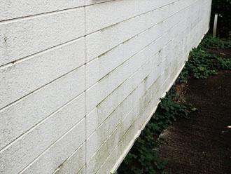南外壁の様子