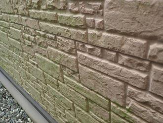 習志野市新栄にて防水性が低下して苔が発生しているサイディング外壁調査