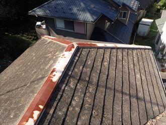 市原市 屋根全体に苔の発生
