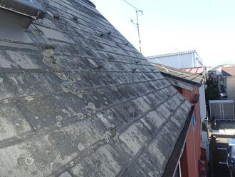 カビが生え、色褪せの目立つスレート屋根