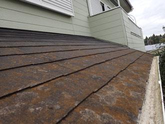 劣化したスレート屋根に藻が発生