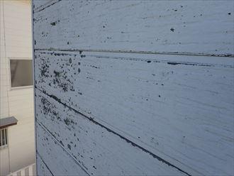 サイディング外壁の塗膜が剥がれ防水性や耐久性が低下