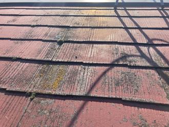 屋根の詳細